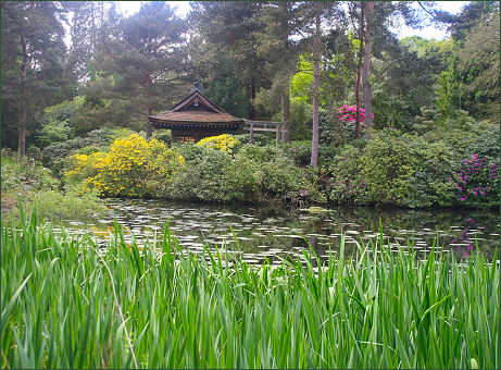 Tatton Park Japanese Garden