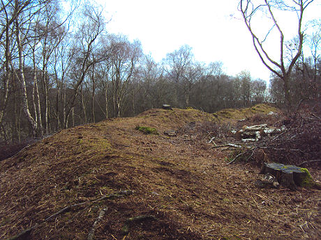 Woodhouses Iron Age Hill Fort