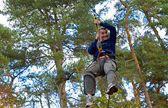 Go Ape at Delamere